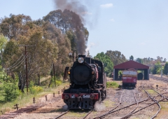 Shunting at Castlemaine siding